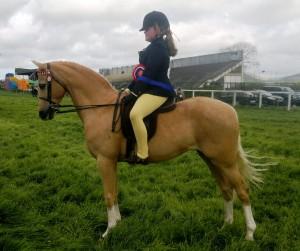 Megan O'Sullivan - Rollswood Nureyev Show Pony Champions Kingdom County Show